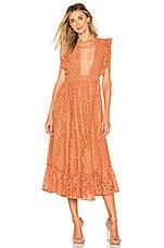 MAJORELLE Mistwood Dress in Golden Coral