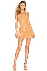 MAJORELLE Brinkley Mini Dress in Golden Blush