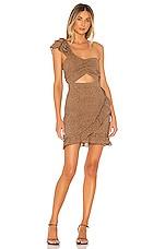 MAJORELLE Dean Mini Dress in Tan Leopard