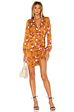 MAJORELLE Sedona Mini Dress in Countryside Multi