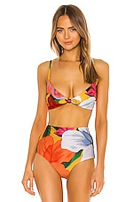 Mara Hoffman Carla Bikini Top in Multi