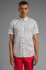 Anderson Floral Shirting in Wicken White Multi