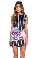 May. Cactus Stripe Shift Dress in Black Base & Cactus Stripe