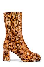 Miista Carlota Boot in Citrine Snake