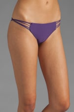 Lanai Multi String Loop Side Bottom in Orchid