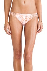 Swimwear Lanai Bikini Bottom in Water Snake Coral