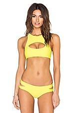 MIKOH Marrakesh Cutout Crop Bikini Top in Lilikoi