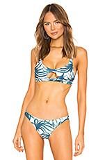 MIKOH Colombia Bikini Top in Water Fern Wakame