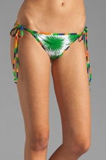 Aster Print Biarritz String Bikini Bottom in Clover