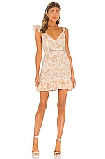 MINKPINK Kiss The Stars Mini Dress in Golden