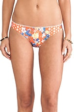 Orange Blossom Bottom in Multi