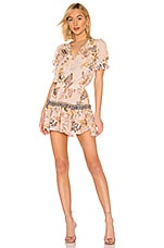 MISA Los Angeles Avani Dress in Pink Paisley