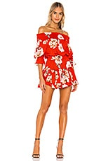 MISA Los Angeles X REVOLVE Darla Dress in Poppy Floral