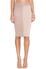 Shae Argyle Pencil Skirt in Nude
