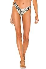 Montce Swim Lulu Bikini Bottom in Leopard