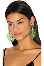 Mercedes Salazar Carmen Miranda Earrings in Green