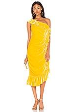 Mestiza New York Flamenco One Shoulder Ruffle Midi Dress in Marigold
