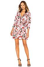 Marissa Webb Scarlet Silk Print Mini Dress in Rouge Bouquet