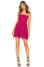 NBD Daimilee Dress in Raspberry & Magenta
