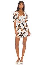 NICHOLAS Mini Caftan Dress in Sepia Multi
