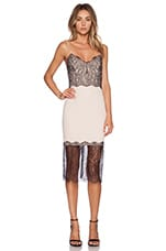 Lace Trim Dress in Nude