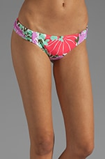 Amalfi Floral Siren Bikini Bottom in Multi