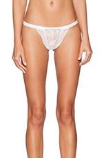 Lace Underwear in White & White