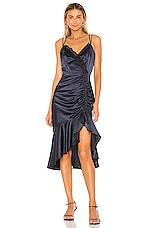 Parker Black Tianna Dress in Midnight