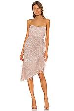 Parker Black Nerissa Dress in Rosewater