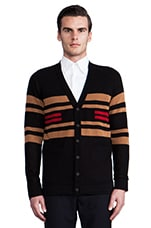 Pinyon Stripe Cardigan in Black Stripe