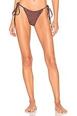 Peony Swimwear String Pant Bikini Bottom in Freckle