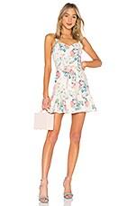 Parker Yuna Dress in Mellow Meadow