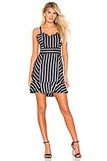 Parker Jemima Dress in Multi Stripe