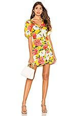 Parker Minna Dress in Lemon Wildflower