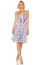 Parker Magna Dress in Striped
