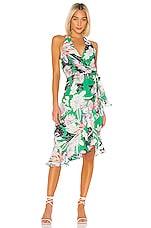 Parker Addie Dress in Emerald Hibiscus