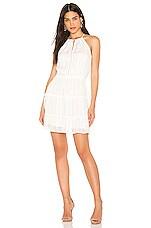 Parker Bruna Dress in Ivory
