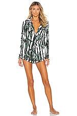 Plush PJ Set in Black & White Jungle Stripe