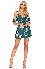 Privacy Please Hamlet Dress in Sage Floral