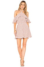 Privacy Please Bennette Mini in Rose Gingham