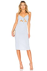Privacy Please Hibiscus Midi in Blue Stripe