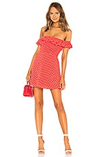 Privacy Please Ellen Mini Dress in Rust Dot