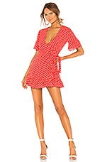 Privacy Please May Mini Dress in Rust Dot