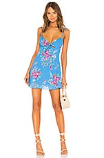 Privacy Please Cabana Mini Dress in Blue Maddie Floral