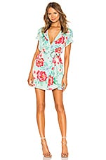 Privacy Please Encinitas Mini Dress in Blue Aleissa Floral
