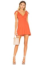 Privacy Please Napa Mini Dress in Burnt Orange