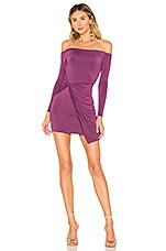Privacy Please Asher Mini Dress in Purple