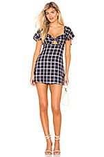 Privacy Please Micah Mini Dress in Pink & Navy Plaid
