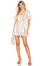 Privacy Please May Mini Dress in Multi Stripe