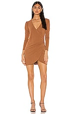 Privacy Please Keira Mini Dress in Brown Tonal Stripe